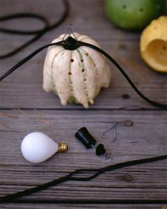 gourd_1095_step3.jpg