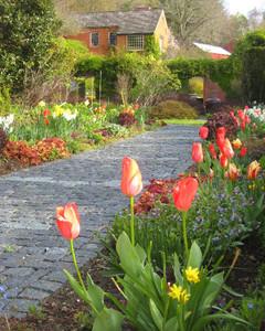5146_051810_garden.jpg