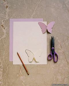 butterfly_spr00_ht.jpg