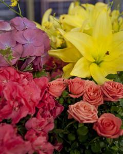 5124_033010_flowers.jpg