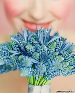 bouquetshapes_sum99.jpg