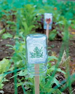 Picture In Bottles | Make Your Own Garden Markers For Cheap With These Ideas