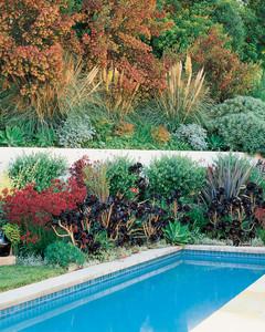 Garden Tour: Hillside Gardening