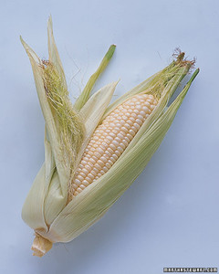 mla102635_0807_corn.jpg