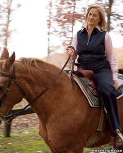 md10278_0307_horse12.jpg