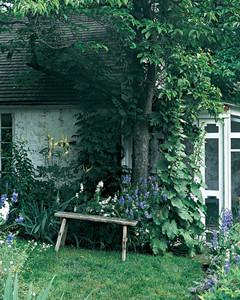 Garden Tour: A Flowering Home