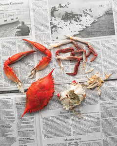 mld105528_0710_crab4.jpg