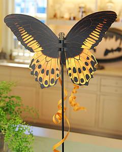 Clip Art Butterfly Specimens Martha Stewart