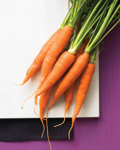 Carrot Recipes