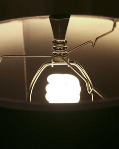 5059_122809_lightbulbs.jpg