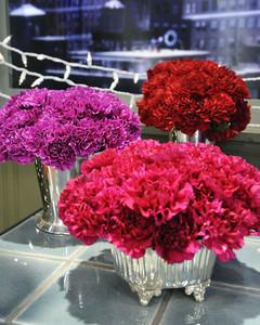 6067_121510_carnations.jpg