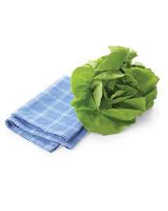 mld103497_0708_lettuce.jpg