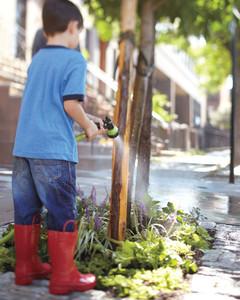 watering-0411mbd106612.jpg
