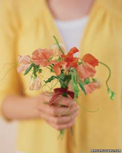 bd_0907_altruismflowers.jpg