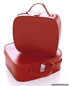 gt03junmsl_suitcasesilo.jpg