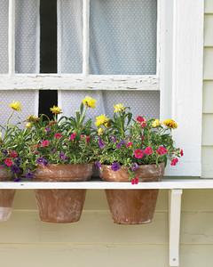 Window Box Alternative & Window Box Alternative | Martha Stewart