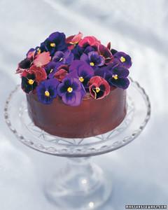 msl_0598_cake.jpg