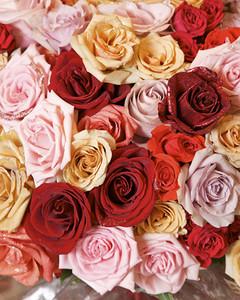 4100_021209_glitterroses.jpg