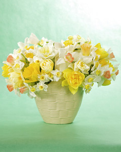 4134_040709_easterflowers.jpg