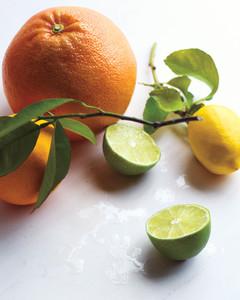med106155_1110_sea_citrus.jpg