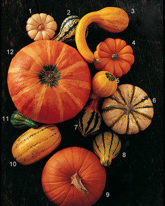 ml1003_1003_pick_pumpkins.jpg