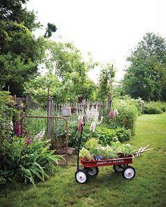 garden-party-wagon-md107635.jpg