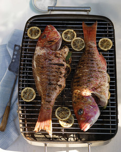 mld104407_0609_grilling_fish.jpg
