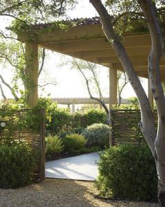 Garden Tour: A Low-Maintenance Garden