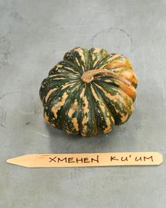 xmehen-pumpkin-mslb7021.jpg