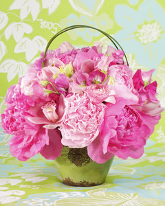 Lilly Pulitzer Flowers
