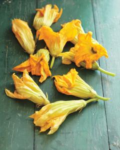 squash-blossoms-0911mld106586.jpg