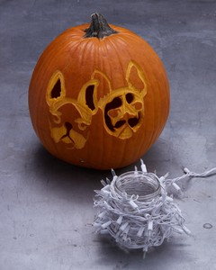 etched dog pumpkin