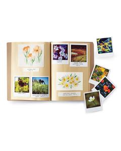 flower-press-book-032-md108770.jpg