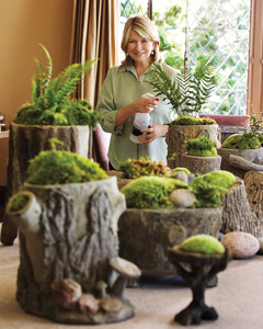 From Martha's Home to Yours: Moss Gardens | Martha Stewart