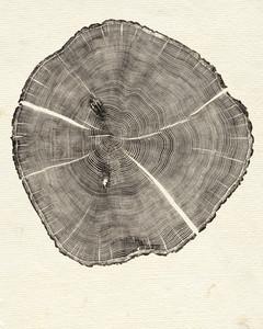 bryan-nash-gill-southport-oak-ms109169.jpg