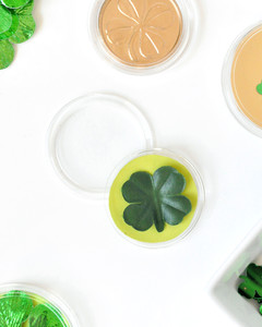 st patricks day good luck tokens step 2