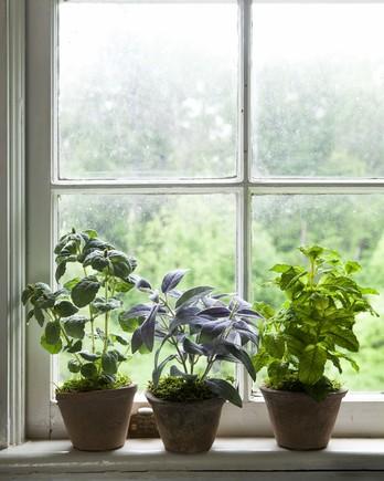 faux plants home NDI