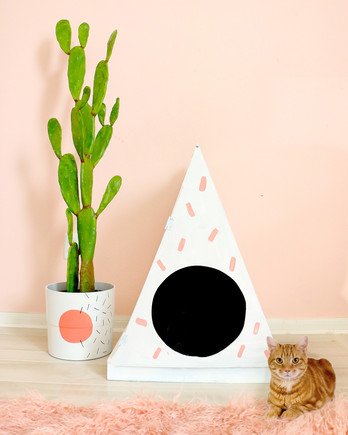 pink and white litter box house next to a cactus and orange cat
