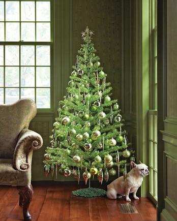 green christmas tree with bulldog by window