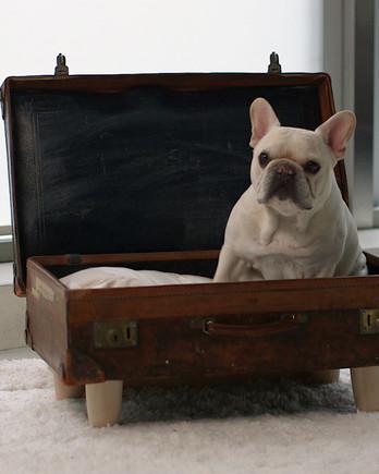 Pet-Bed Suitcase IMAGE