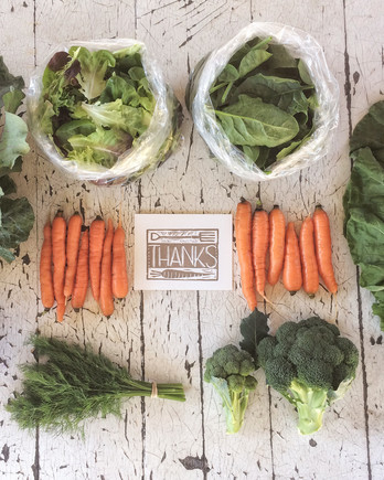 farm crops carrots broccoli cabbage thanks card