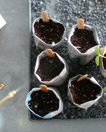 DIY Seed and Seedling Pots Video Image
