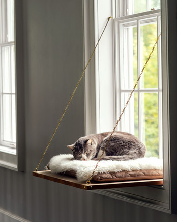 window ledge cat bed