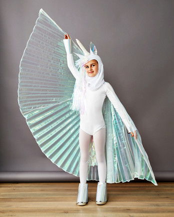 pegasus unicorn halloween costume