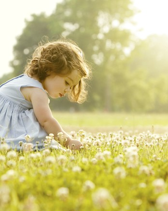 little girl picking flowers in a field