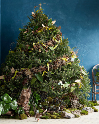 large christmas tree adorned with pine cones and moss