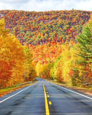 kancamagus-highway-foliage-getty-1019-opus.jpg