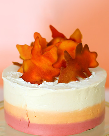 fall leaves ombre cake video still