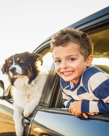 kid and dog leaning out of car on the beach