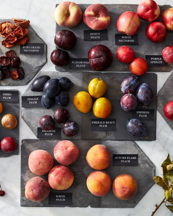 stone fruit glossary martha bakes